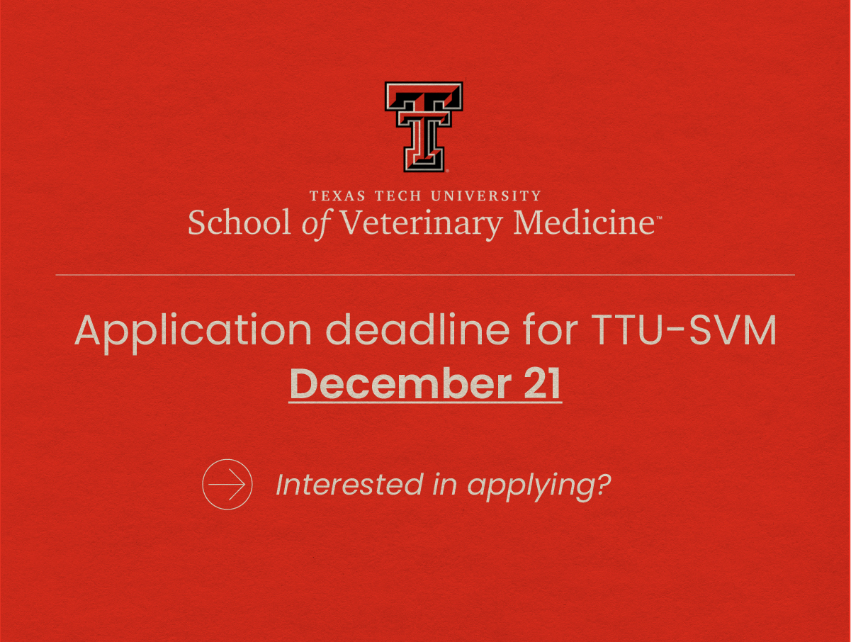 Here's how to apply to the Texas Tech University School of Veterinary Medicine